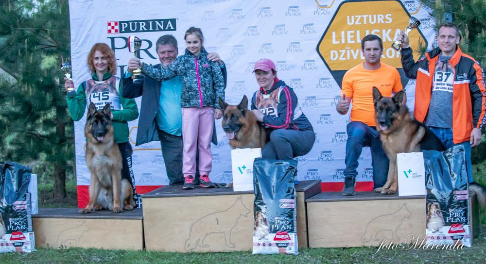 LVASK 12 05 2019  show results – Latvijas Vācu Aitu Suņu Klubs
